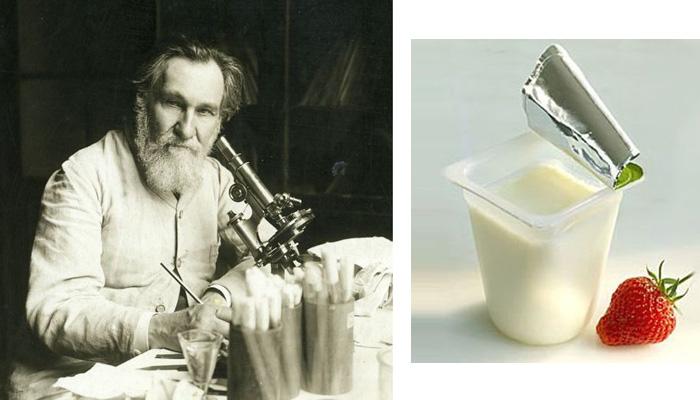 Профессор Мечников - крестный отец йогурта