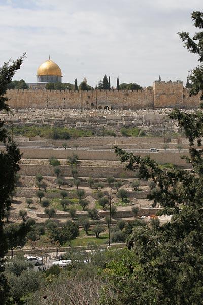Золотые ворота Иерусалима. Вид от храма святой Марии Магдалины